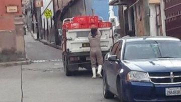 Transportan carne de pollo en una camioneta