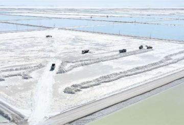 Alemania pide señales claras para salvar negocio de $us 2.184 millones por litio