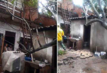 Un árbol cayó sobre tejado de una casa en La Chacarilla de Santa Cruz