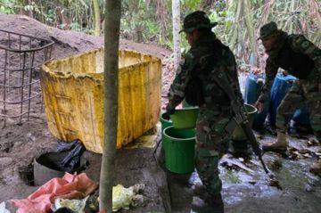 Destruyen 29 fábricas de cocaína y aprehenden a dos personas