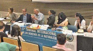 """Comisión de expertos evaluará  el """"ecocidio"""" en la Chiquitanía"""