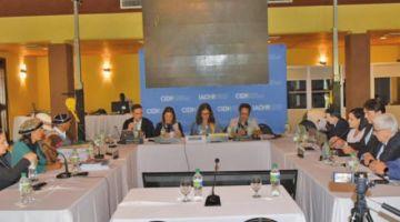 CIDH promete revisar situación de la nación Qhara Qhara