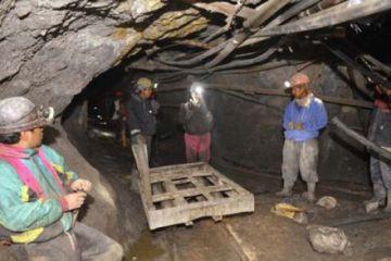 Denuncian que Morales intentó liquidar a cooperativas mineras