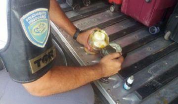 Un boliviano llevaba droga en latas de duraznos