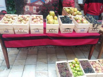 Cotagaita desarrollará la XXII versión de su feria frutícola