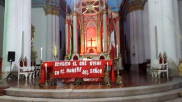 Participe desde aquí en la misa del Domingo de Ramos