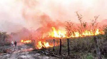 Activistas e instituciones ratifican la necesidad de abrogar normas de quemas ante inicio de chaqueo