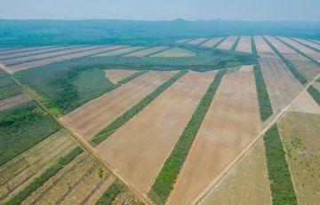 """Denuncian """"descarada"""" privatización de tierras fiscales en favor del agro cruceño"""