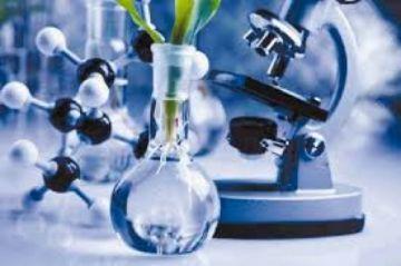 Presidenta y gabinete ministerial evaluarán uso de nuevos eventos biotecnológicos para el agro