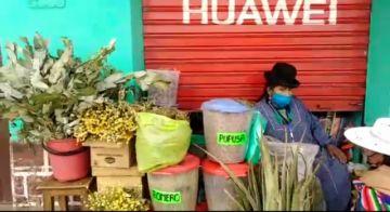 Ofrecen hierbas para desinfecciones naturales