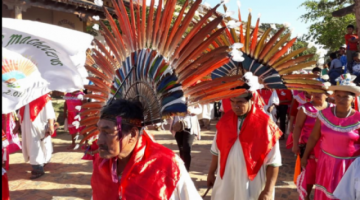 Pueblos indígenas de Bolivia registran 25 casos de coronavirus y 7 fallecidos