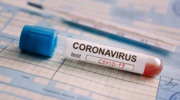 Sedes Tarija procesa 24 pruebas de COVID-19 y recomienda no flexibilizar cuarentena
