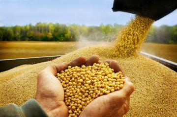 En 13 años las exportaciones agropecuarias de Bolivia superaron los $us 18.000 millones