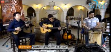 Disfrute de un concierto virtual en cuarentena