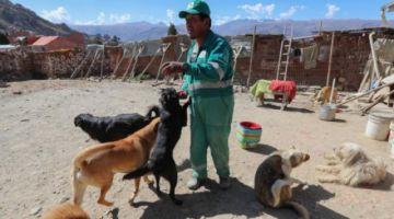El ángel boliviano que salva animales abandonados en la basura