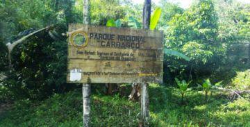 Constatan aprestos para el cultivo de coca en el Parque Nacional Carrasco