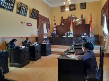 Concejo dilata la reducción de sueldos de sus integrantes