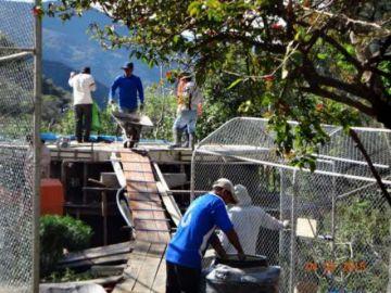 Refugio donde piensan trasladar al zorro Antonio pide donaciones para seguir funcionando