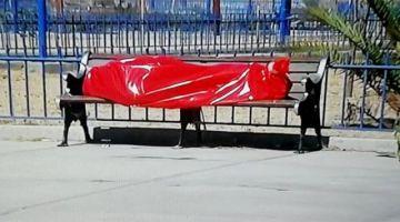 El IDIF hizo el levantamiento de 13 cuerpos en casas y vía pública