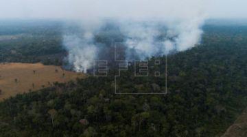 La Amazonía brasileña sufre en junio los mayores incendios en más de una década