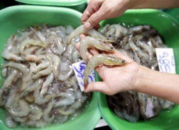 China suspende importación de gambas de Ecuador al detectar virus en paquetes