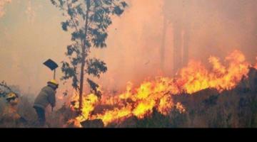 A un año del DS que autoriza quemas, la medida no ha sido derogada en Bolivia