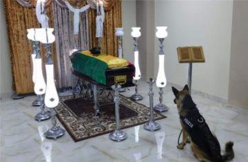 Conozca el origen de la foto viral de un perro frente a un féretro en Bolivia