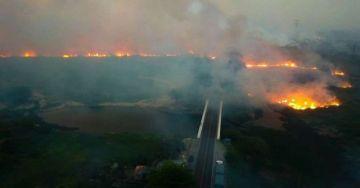 Los incendios se triplican en el Pantanal brasileño