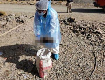 Oruro: Dictan cárcel para los posibles autores del crimen de una recién nacida