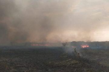 Ministra anuncia 'mano dura' contra los autores de la quema