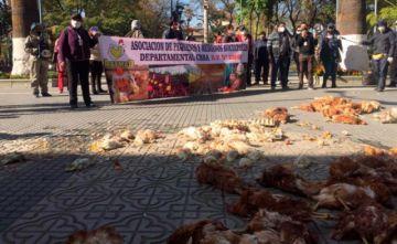 Avicultores protestan desechando pollos frente a la Gobernación de Cochabamba