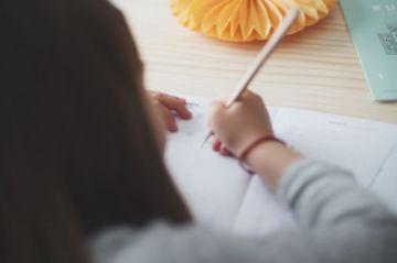 Gobierno ve trasfondo político en resolución que anula clausura del año escolar