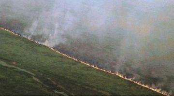 Los incendios consumen 10 por ciento del Pantanal