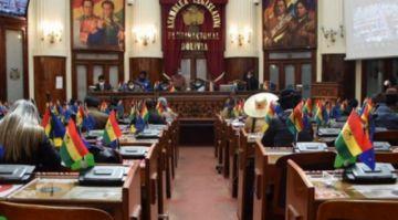 """El MAS aprobó cinco leyes calificadas de """"inconstitucionales"""" y promulgó tres"""