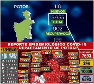 ¿Por qué los datos del Sedes Potosí y los del Ministerio de Salud no coinciden?