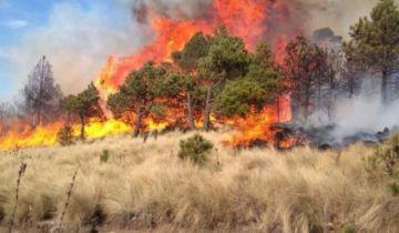 Santa Cruz declara emergencia ante los incendios y la sequía