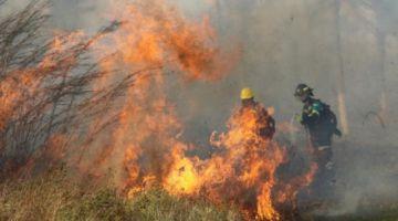 Santa Cruz reporta 22 incendios forestales en su territorio