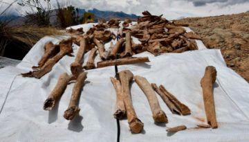 La Paz: Encuentran restos humanos enterrados en fosas comunes