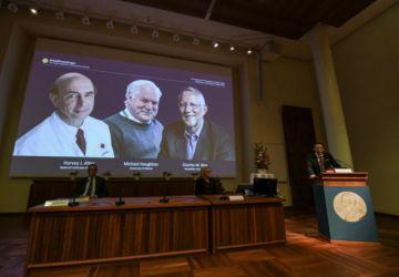 Otorgan el Nobel de Medicina para tres descubridores del virus de la hepatitis C