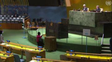 Bolivia entra al Consejo de DDHH de la ONU