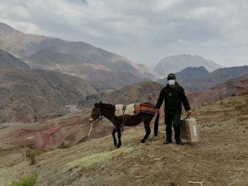 Las maletas electorales cruzaron ríos y llegaron a recintos hasta en burros