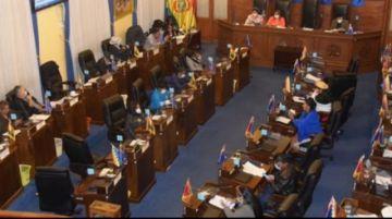 El MAS en el Senado aprueba eliminar los dos tercios para 11 decisiones