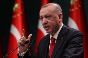 La política de mano dura de Erdogan en Turquía desde el fallido golpe de Estado