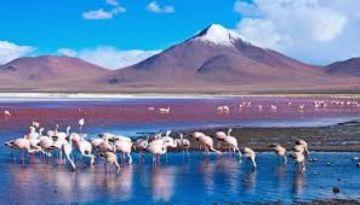 Gobierno invita a operadores de turismo a preparar paquetes de viaje accesibles