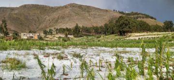 Por tercera vez, el granizo afectó 10 comunidades de Betanzos