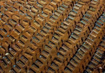 Brasil vuelve a superar 1.000 muertes diarias por covid-19