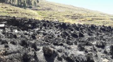 Detectan fuego interno en la Isla del Sol en La Paz