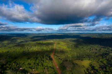 Unos 8.500 km2 de selva amazónica deforestados en 2020