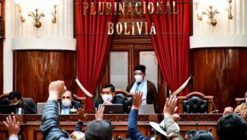 Diputados aprueban Ley de Emergencia Sanitaria pese a rechazo de médicos y oposición