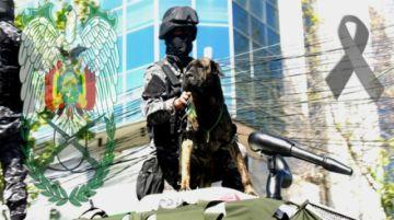 Cochabamba: Muere Baquiro, el fiel guardián de la Policía, tras 18 años de vida